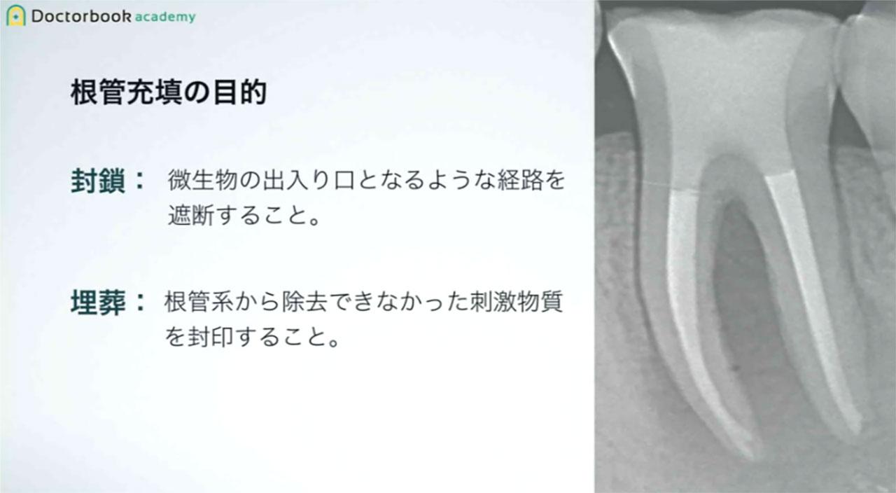 【LIVE配信】梅田貴志先生クリニカル・カンファレンス Part2《参加レポート》